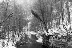 χειμώνας της Ρουμανίας Στοκ εικόνες με δικαίωμα ελεύθερης χρήσης