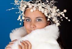 χειμώνας τιαρών μαργαριτα&rh Στοκ Φωτογραφία