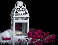 Χειμώνας τον Ιούλιο Στοκ Εικόνα