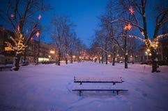 χειμώνας τοπίου πάγκων Στοκ εικόνα με δικαίωμα ελεύθερης χρήσης