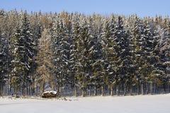 Χειμώνας, τοπίο χιονιού στη Βαυαρία, Γερμανία στοκ εικόνες