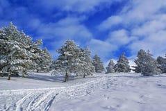 χειμώνας τοπίων χ Στοκ Εικόνα