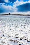 χειμώνας τοπίων Στοκ Εικόνα