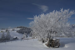 χειμώνας τοπίων Στοκ Εικόνες