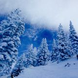χειμώνας του Κολοράντο Στοκ φωτογραφίες με δικαίωμα ελεύθερης χρήσης