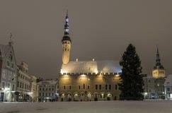 χειμώνας του Ταλίν Στοκ εικόνες με δικαίωμα ελεύθερης χρήσης