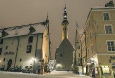 χειμώνας του Ταλίν στοκ φωτογραφία με δικαίωμα ελεύθερης χρήσης
