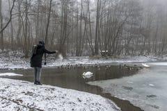Χειμώνας 7 τροφών πουλιών παπιών κύκνων λιμνών σίτισης γυναικών Στοκ Εικόνα