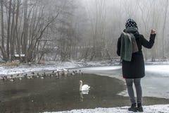 Χειμώνας 5 τροφών πουλιών παπιών κύκνων λιμνών σίτισης γυναικών Στοκ Φωτογραφία