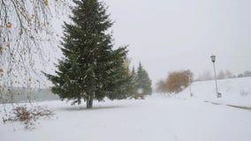 Χειμώνας τρόπων δέντρων αλεών πάρκων κατά τη διάρκεια των βαθιών χιονοπτώσεων σε σε αργή κίνηση 1920x1080 απόθεμα βίντεο
