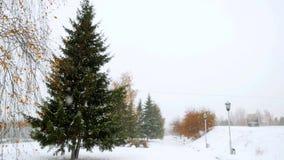 Χειμώνας τρόπων δέντρων αλεών πάρκων κατά τη διάρκεια των βαθιών χιονοπτώσεων 4K απόθεμα βίντεο