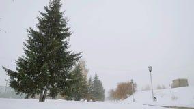 Χειμώνας τρόπων δέντρων αλεών πάρκων κατά τη διάρκεια των όμορφων χιονοπτώσεων σε σε αργή κίνηση 1920x1080 απόθεμα βίντεο