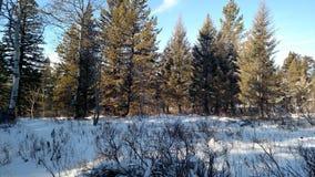 Χειμώνας υπαίθρια στη ζωή μου Στοκ Φωτογραφίες