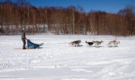 χειμώνας υπολοίπου Στοκ εικόνα με δικαίωμα ελεύθερης χρήσης