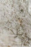 Χειμώνας, υπόβαθρο, Χριστούγεννα, δάσος, τοπίο, φύση, χιόνι Στοκ εικόνα με δικαίωμα ελεύθερης χρήσης