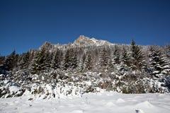 χειμώνας υψηλών βουνών Στοκ εικόνα με δικαίωμα ελεύθερης χρήσης