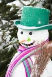 Χειμώνας - χιονάνθρωπος σε ένα χιονώδες τοπίο με ένα καπέλο στοκ εικόνα