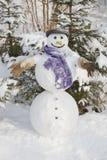 Χειμώνας - χιονάνθρωπος σε ένα χιονώδες τοπίο με ένα καπέλο στοκ φωτογραφία με δικαίωμα ελεύθερης χρήσης