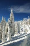 χειμώνας χιονιού βουνών τ&omic Στοκ εικόνα με δικαίωμα ελεύθερης χρήσης