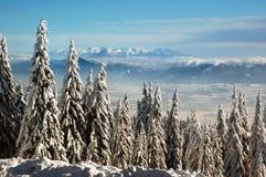 χειμώνας χιονιού βουνών τ&omic Στοκ Εικόνες