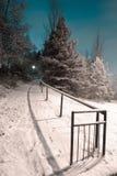 χειμώνας χιονιού σκηνής νύχ& στοκ εικόνες με δικαίωμα ελεύθερης χρήσης