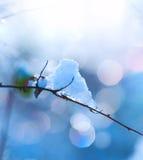 χειμώνας χιονιού σχεδίου τέχνης Στοκ εικόνες με δικαίωμα ελεύθερης χρήσης