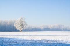 χειμώνας χιονιού τοπίων Στοκ εικόνα με δικαίωμα ελεύθερης χρήσης