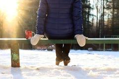 Χειμώνας Χριστουγέννων φλυτζανιών πάγκων Στοκ εικόνα με δικαίωμα ελεύθερης χρήσης