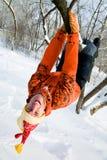 χειμώνας ψυχαγωγιών στοκ φωτογραφίες με δικαίωμα ελεύθερης χρήσης