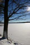 χειμώνας όψης λιμνών στοκ εικόνα με δικαίωμα ελεύθερης χρήσης