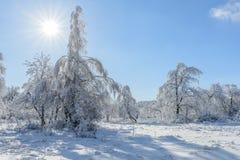 χειμώνας όψης της Ουκρανίας ήλιων βουνών moloda Στοκ φωτογραφίες με δικαίωμα ελεύθερης χρήσης