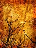 χειμώνας ύφους ανασκόπησ&et Στοκ Εικόνες