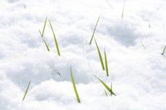 χειμώνας Στοκ Φωτογραφίες