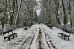 χειμώνας 38 Στοκ Εικόνες