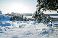 χειμώνας 3 Στοκ Εικόνα