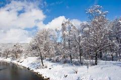 χειμώνας Στοκ εικόνες με δικαίωμα ελεύθερης χρήσης