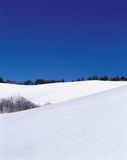 χειμώνας στοκ εικόνα με δικαίωμα ελεύθερης χρήσης