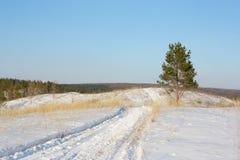 Χειμώνας andscape Στοκ Φωτογραφία