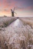 Χειμώνας Broads Στοκ φωτογραφίες με δικαίωμα ελεύθερης χρήσης