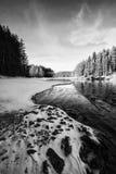 Χειμώνας bw Στοκ εικόνα με δικαίωμα ελεύθερης χρήσης