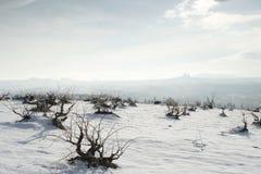 χειμώνας cappadocia Στοκ εικόνα με δικαίωμα ελεύθερης χρήσης