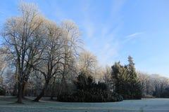 Χειμώνας Castle νεράιδων Γερμανία wolfsburg στοκ φωτογραφία με δικαίωμα ελεύθερης χρήσης