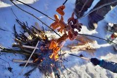 Χειμώνας cookout με τα λουκάνικα επάνω από την πυρκαγιά που τοποθετείται στο χιόνι Στοκ Εικόνες