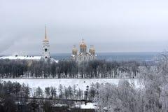 χειμώνας dormition καθεδρικών ναώ&n Στοκ φωτογραφία με δικαίωμα ελεύθερης χρήσης