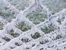Χειμώνας kristall gudensberg σε Gudensberg Στοκ Εικόνες