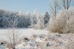 Χειμώνας landschap στοκ εικόνες με δικαίωμα ελεύθερης χρήσης
