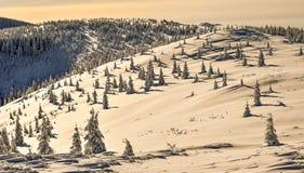 Χειμώνας silense Στοκ Φωτογραφίες