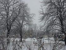Χειμώνας Sofia Στοκ φωτογραφίες με δικαίωμα ελεύθερης χρήσης