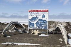 Χειραμάξιο Αλάσκα Στοκ εικόνες με δικαίωμα ελεύθερης χρήσης