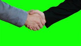 Χειραψία στο υπόβαθρο μιας πράσινης οθόνης απόθεμα βίντεο